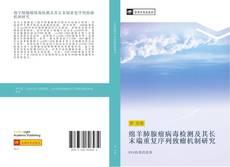 Bookcover of 绵羊肺腺瘤病毒检测及其长末端重复序列致瘤机制研究