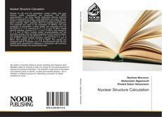 Nuclear Structure Calculation的封面