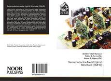 Bookcover of Semiconductor-Metal Hybrid Structure (SMHS)