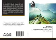 Bookcover of Système aquifère du Haut Atlas oriental, Maroc