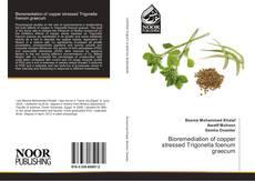 Bookcover of Bioremediation of copper stressed Trigonella foenum graecum