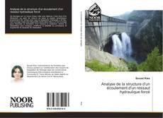 Bookcover of Analyse de la structure d'un écoulement d'un ressaut hydraulique forcé
