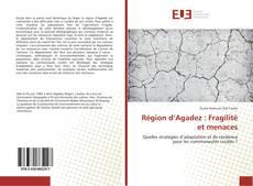 Couverture de Région d'Agadez : Fragilité et menaces