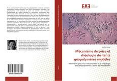 Mécanisme de prise et rhéologie de liants géopolymères modèles kitap kapağı