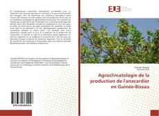 Bookcover of Agroclimatologie de la production de l'anacardier en Guinée-Bissau