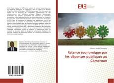 Buchcover von Relance économique par les dépenses publiques au Cameroun