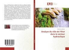 Bookcover of Analyse du rôle de l'Etat dans le secteur hydraulique