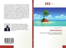 Bookcover of Côte d'Ivoire: