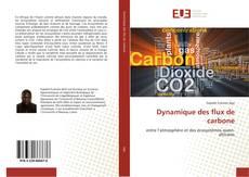 Couverture de Dynamique des flux de carbone