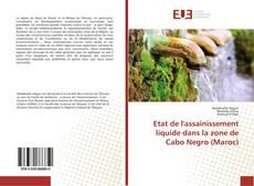Bookcover of Etat de l'assainissement liquide dans la zone de Cabo Negro (Maroc)