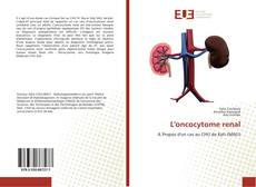 Couverture de L'oncocytome renal