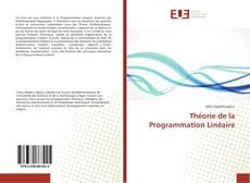 Couverture de Théorie de la Programmation Linéaire
