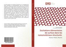 Bookcover of Excitations élémentaires de surface dans les nanomatériaux structurés:
