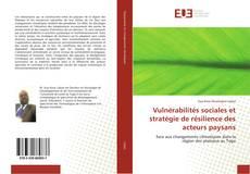Bookcover of Vulnérabilités sociales et stratégie de résilience des acteurs paysans