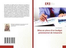 Capa do livro de Mise en place d'un budget prévisionnel de trésorerie