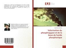 Couverture de Valorisation du phosphogypse et de la boue de l'acide phosphorique