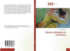 Névrose phobique et Castration的封面