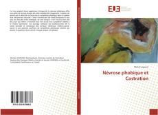 Névrose phobique et Castration kitap kapağı