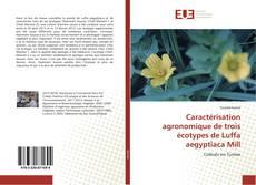 Обложка Caractérisation agronomique de trois écotypes de Luffa aegyptiaca Mill