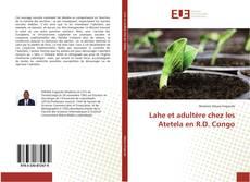 Bookcover of Lahe et adultère chez les Atetela en R.D. Congo