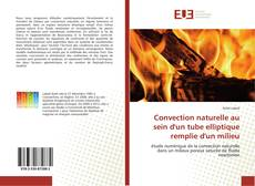 Bookcover of Convection naturelle au sein d'un tube elliptique remplie d'un milieu