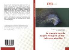 Bookcover of Le lamantin dans la Lagune Ndougou, un bio-indicateur du milieu ?