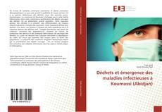 Capa do livro de Déchets et émergence des maladies infectieuses à Koumassi (Abidjan)