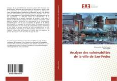 Analyse des vulnérabilités de la ville de San-Pédro的封面