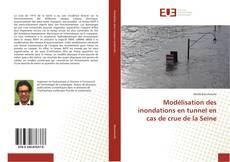 Bookcover of Modélisation des inondations en tunnel en cas de crue de la Seine