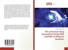 Bookcover of The anticancer drug doxorubicin binds DNA and RNA at different locations