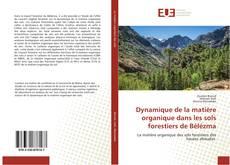 Bookcover of Dynamique de la matière organique dans les sols forestiers de Bélézma