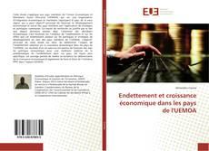 Couverture de Endettement et croissance économique dans les pays de l'UEMOA