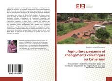 Bookcover of Agriculture paysanne et changements climatiques au Cameroun