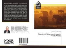 Copertina di Retention of fetal membranes in Iraqi buffaloes