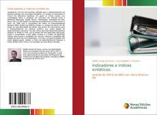 Buchcover von Indicadores e índices sintéticos: