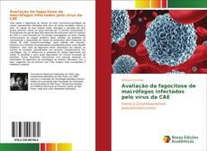 Buchcover von Avaliação da fagocitose de macrófagos infectados pelo vírus da CAE