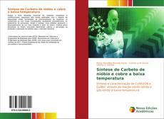 Bookcover of Síntese de Carbeto de nióbio e cobre a baixa temperatura