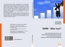 Обложка SOWI - Was nun?