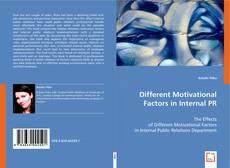 Обложка Different Motivational Factors in Internal PR