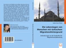 Buchcover von Die Lebenslagen von Menschen mit türkischem Migrationshintergrund