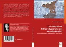 Die mikrobielle Nitratreduzierung auf Wandmalereien的封面