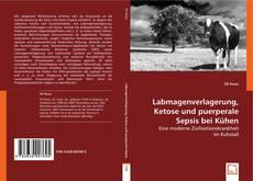 Bookcover of Labmagenverlagerung, Ketose und puerperale Sepsis bei Kühen