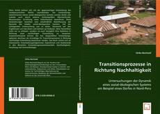 Transitionsprozesse in Richtung Nachhaltigkeit kitap kapağı