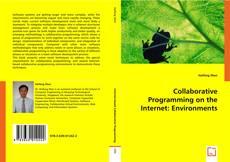 Collaborative Programming on the Internet: Environments kitap kapağı