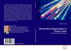 Buchcover von Microtubule Organization in Fission Yeast