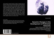 Bookcover of Dynamic Changes in the Development of Prefrontal Networks
