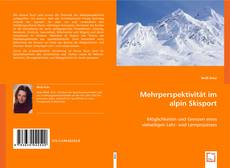 Bookcover of Mehrperspektivität im alpin Skisport