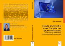 Buchcover von Soziale Grundrechte in der Europäischen Grundrechtecharta