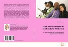From Factory Fodder to Multicultural Mediators的封面