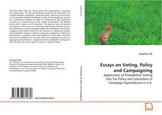 Essays on Voting, Policy and Campaigning kitap kapağı